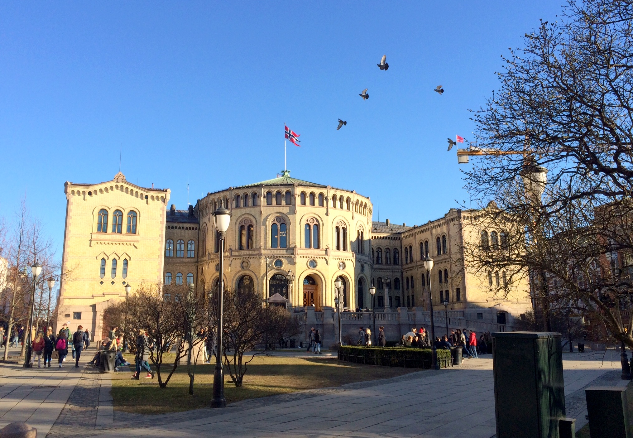 Tall girl's fashion // Visiting Stortinget, Norway's parliament